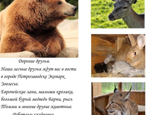 Экопарк Зоолесье