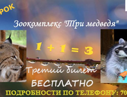 "АКЦИЯ ""1+1=3"""