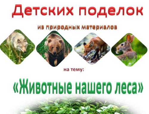 """Конкурс детских поделок """"животные нашего леса"""""""
