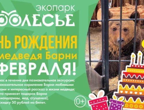 День рождения медведя Барни